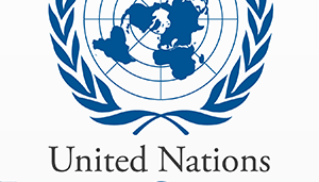UN_economic